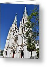 The Cathedral Of St. John The Baptist Greeting Card