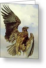 The Wounded Eagle Greeting Card