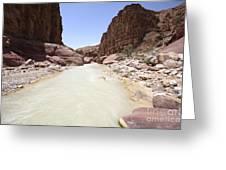 Wadi Zered Western Jordan Greeting Card