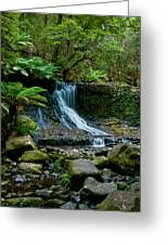 Waterfall In Deep Forest Greeting Card