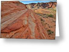 Wave Of Color In Valley Of Fire Greeting Card