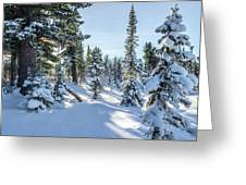 Amazing Landscape With Frozen Snow-covered Trees In Winter Morning  Greeting Card