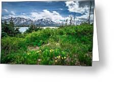 The White Pass And Yukon Route On Train Passing Through Vast Lan Greeting Card
