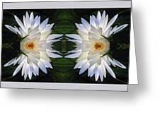 White Lotus Mandala Greeting Card