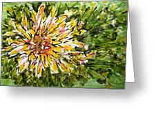 Divine Blooms Greeting Card