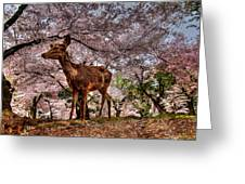 Nara Japan Greeting Card