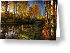 Cool Landscape Greeting Card