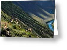 Nature Scene Greeting Card