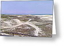360 Panorama Of Sandy Neck Greeting Card