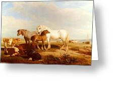 Willis Henry Brittan Horses And Cattle On The Shore Henry Brittan Willis Greeting Card