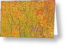 3983 Autumn Pleasure Greeting Card