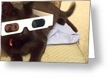 3d Cat Greeting Card