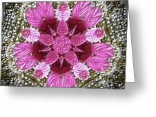 3d Pink Purple Mandala Painting Greeting Card