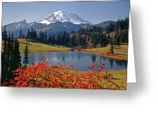 3m4824 Tipsoo Lake And Mt. Rainier H Greeting Card