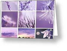 3x3 Purple Greeting Card