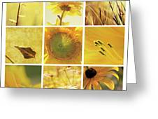 3x3 Yellow Greeting Card