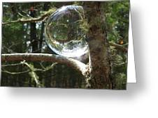 4-22-16--8699 Don't Drop The Crystal Ball, Crystal Ball Photography  Greeting Card