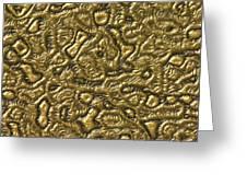 Alien Skin Greeting Card