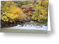 Autumn Foliage In Zion National Park Greeting Card