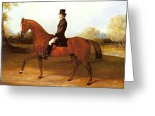 Barraud Henry Richard Paget Of Cropston Leicester On A Bay Hunter Henry Barraud Greeting Card