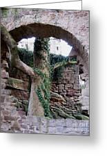 Castle Ruin Noerten-hardenberg Greeting Card