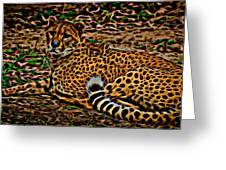 Cheeta Greeting Card