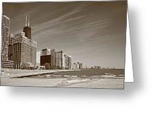 Chicago Skyline And Beach Greeting Card