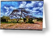 Desertic Tree Greeting Card