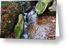 4 Faces In The Water Greeting Card