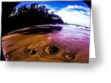 Fisheye Camera Greeting Card