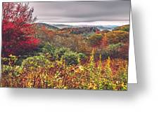 Graveyard Fields Overlook In The Smoky Mountains In North Caroli Greeting Card