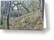 Hill Country Greeting Card