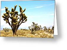 Joshua Tree Desert Greeting Card