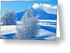 Landscape Light Greeting Card