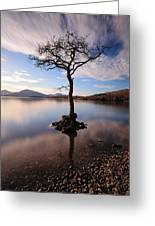 Loch Lomond Tree Greeting Card