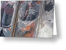 Mining Excavator On The Bottom Surface Mine.  Greeting Card