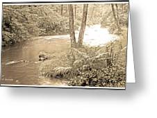 Mud Run Pocono Mountain Stream Pennsylvania Greeting Card