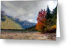 New Landscape Greeting Card
