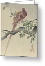 Ohara Koson Greeting Card