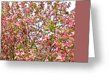 Pink Cherry Tree Greeting Card