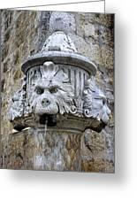 Public Fountain In Dubrovnik Croatia Greeting Card