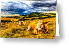 Resting Cows Art Greeting Card