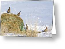 4 Roosters And A Hen Greeting Card
