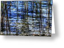 Sawgrass Revisited Greeting Card