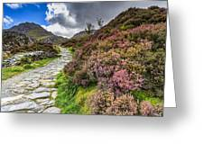 Snowdonia National Park - Greeting Card