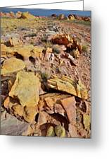 Splash Of Color In Valley Of Fire Greeting Card