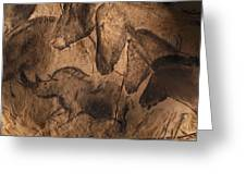 Stone-age Cave Paintings, Chauvet, France Greeting Card