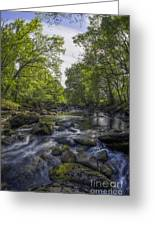Summer River Greeting Card
