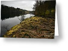 Tarn Hows Greeting Card