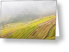 Terrace Fields Scenery In Autumn Greeting Card